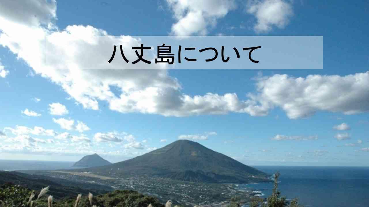 八丈島について.jpg